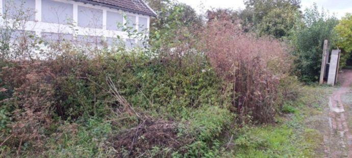 Vente terrain à Calonne-Ricouart - Ref.blb82 - Image 1